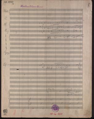 Fürstin Ninetta : Operette / Musik von Johann Strauss (Sohn). Von Julius Bauer und Hugo Wittmann von Johann Strauss
